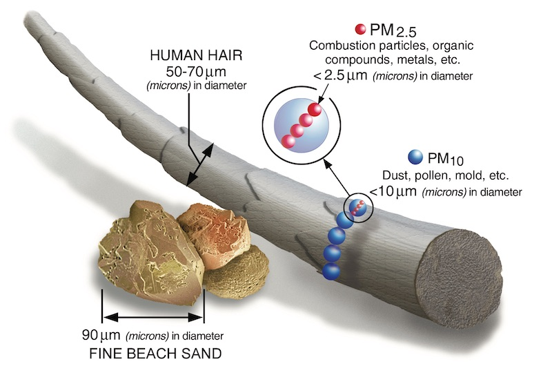 harms from particulates